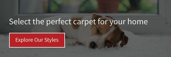 Explore our carpet styles